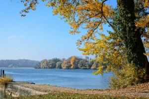 autumn-1021317_1920