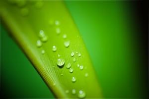 droplets-195838_1920